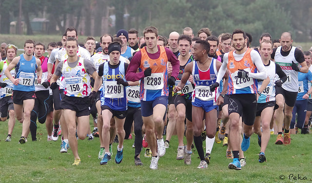 Cross de Nemours 2014 : Les photos