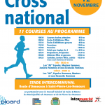 CROSS NATIONAL DE NEMOURS SAINT PIERRE