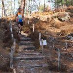 Lyrican trail de Larchant 2018